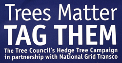 Trees matter tag